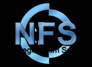 NFS logo stor